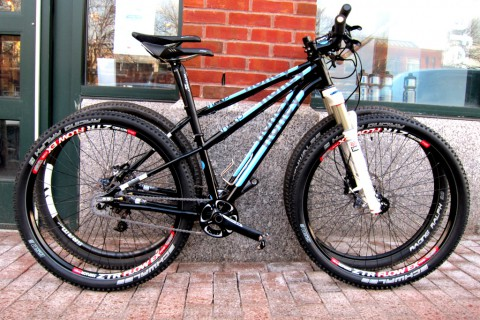 Honey 29er and 650b