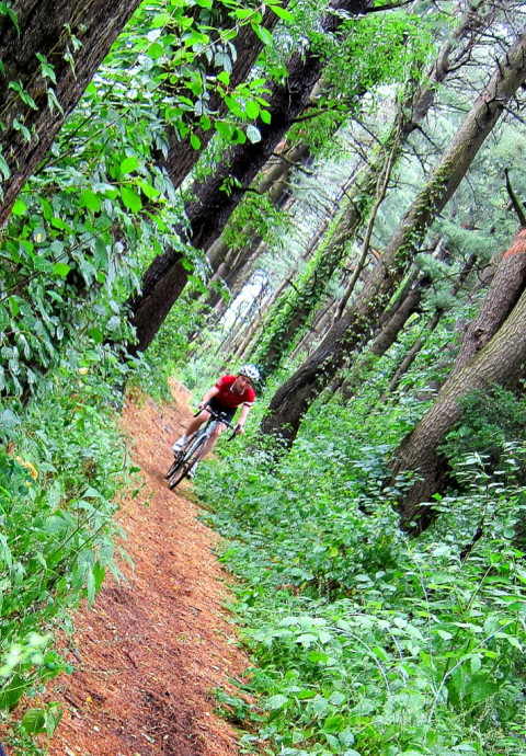 Evergreen Riding - photo - Rob Vandermark