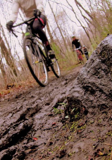 Spring moss and grass in the Diverged mud - photo - Rob Vandermark