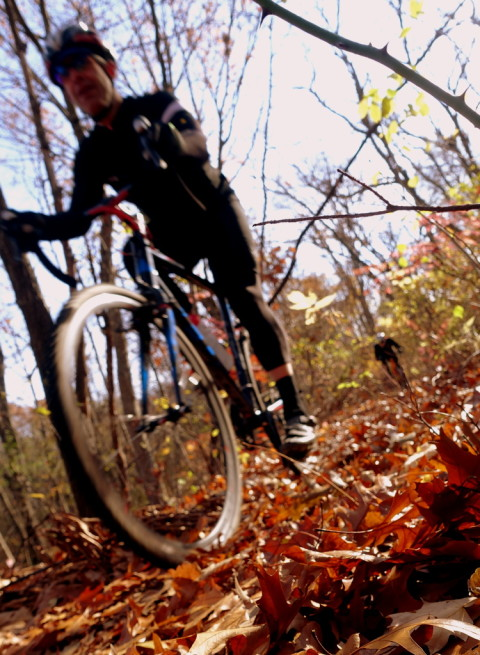 Crunching leaves in the fall - photo - Rob Vandermark